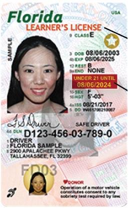 Sample Learners License